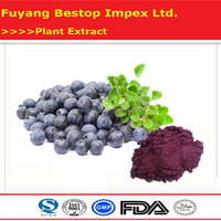 Yue Ju Factory Supply Low Price Bilberry Fruit Extract