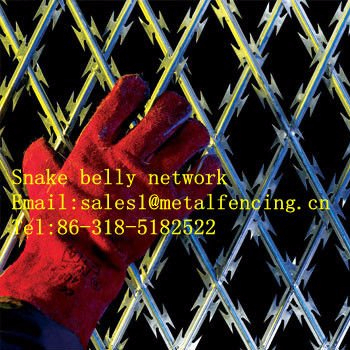 Snake belly network