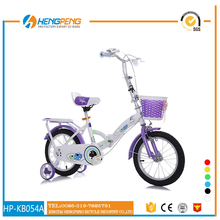 Professional China Factory Sale Bike Wholesale/Folding bike With Basket