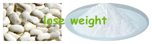 Loss weight white kidney bean extract