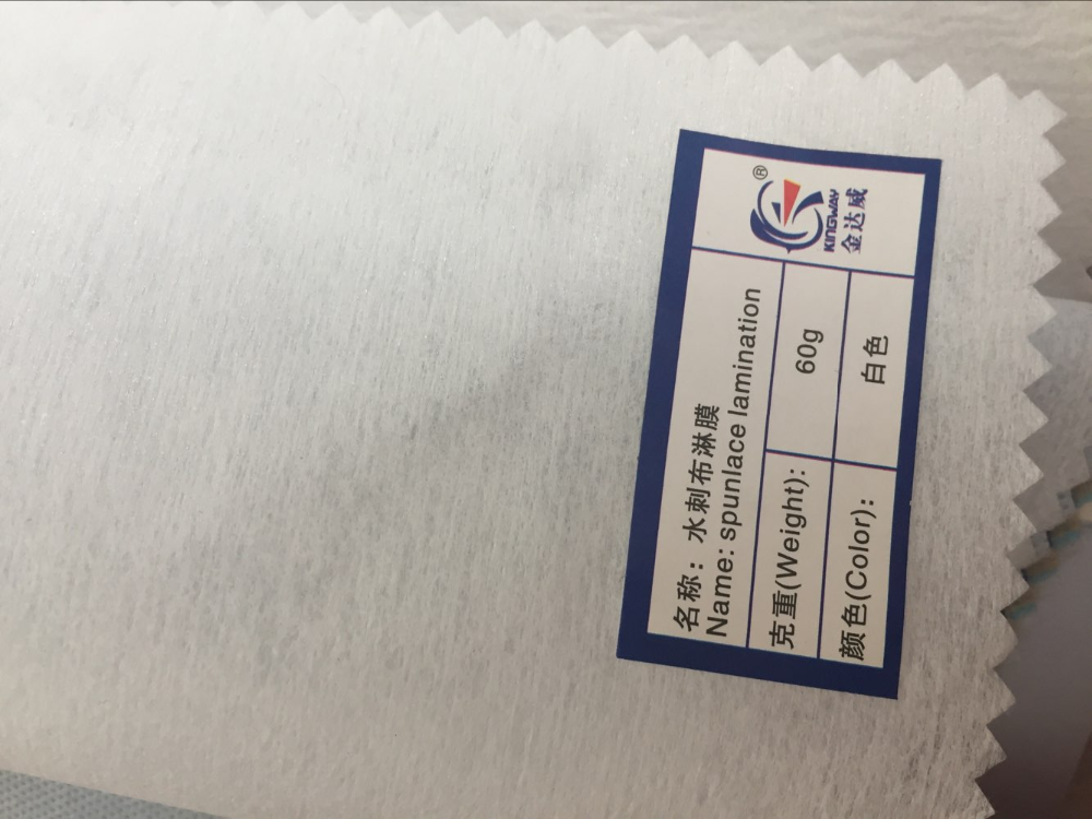 Polyester spunlace nonwoven