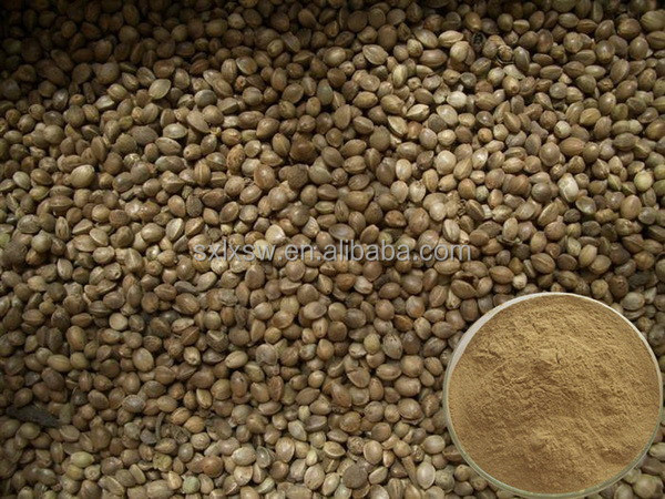 Export high quality china manufacturer hemp seed extract echinacea herb extract