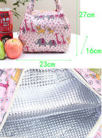Insulation Bag Lunch Pouch Ice Bags Outdoor Cooler Bag Ice Pack Bottle