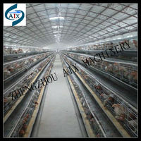 Long time working stainless steel poultry coop for chicken feeding