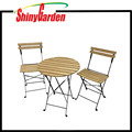 3pcs Folding Patio Bistro Table & Chair Set, Wood & Steel