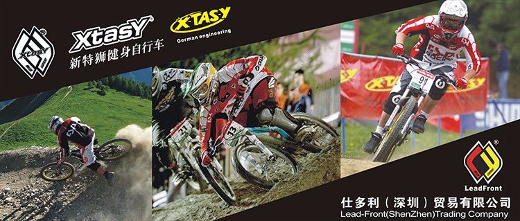 XTASY electric bicycle from China,mountain electric bicycle