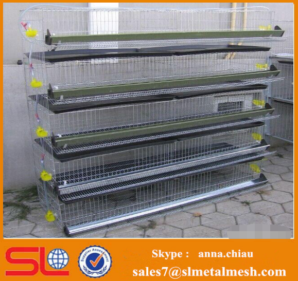 Wholesale quail cages and equipment quail layer cages for sale