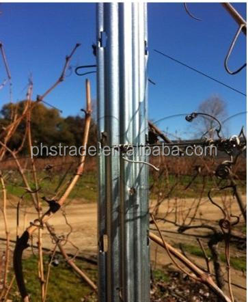 farm used vineyard stakes/fence post selling