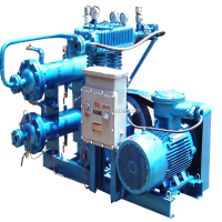 CNG mini oil free gas compressor