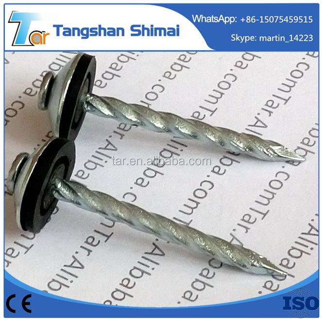 China umbrella head galvanized roofing nail with washer factory price High quality rubber washer roofing nails/plastic washers