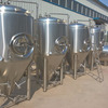 1000 10HL Stainless Steel Conical Fermenter