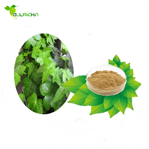 Natural & Pure competitive-price Ivy Extract, Chinese Ivy Stem Extract, Hederin