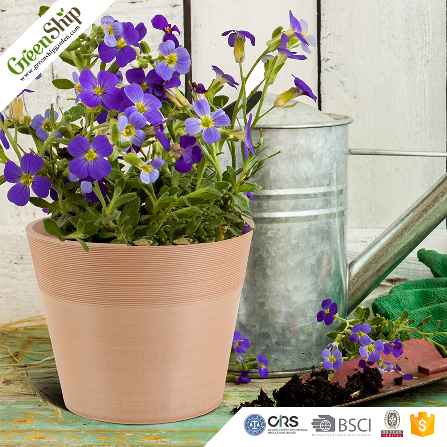 Plant Pot Unique Type And Fashionable Design Indoor For