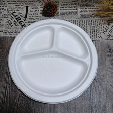 Disposable Bagasse Pulp Tableware Biodegradable Sugarcane Paper Plate