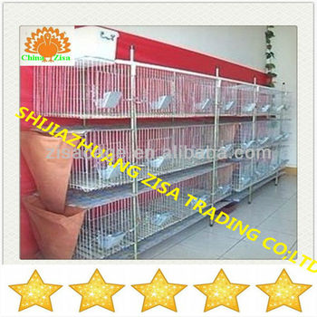 Automatic mather rabbit farm cage equipment cheap price