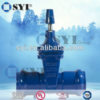 cs gate valve - SYI GROUP