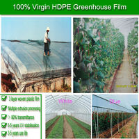 Greenhouse Misting System/Greenhouse Covering Film/Galvanized Greenhouse Pipe film