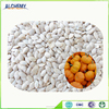 wholesale snow white pumpkin seeds peeled pumpkin seeds
