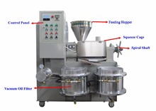 High capacity New Cheap cold press oil machine