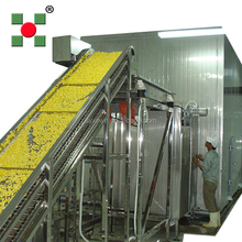 industrial vegetable and fruit iqf tunnel freezer/conveyor belt fluidized flow bed blast iqf freezing tunnels equipment