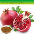 china supply wholesale pomegranate extract