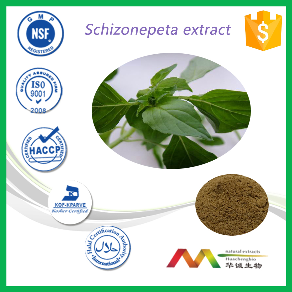 NSF-GMP Supplier provide health products Cat Nut Extract