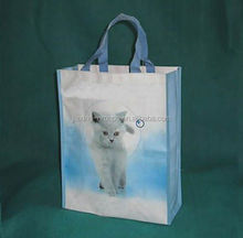 High quality supermarket pp woven shopping bag with custom print,OEM orders arewelcome