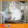 Meat Rabbit Cages / Industrial Rabbit Cages / Commercial rabbit farm cage