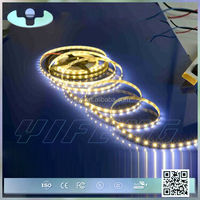 SL-G high quality durable factory directly provide 220v dimmable led strip lights