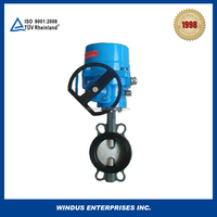 wcb butterfly valve