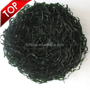 machine dried sea kelp cut / dried laminaria japonica