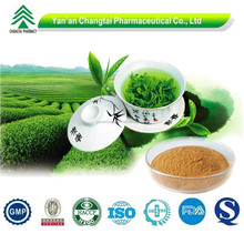 Supply hot sale organic high purity Green Tea Extract
