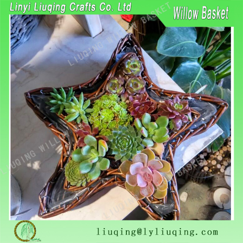 Five-pointed star shape wicker flower basket