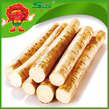 Buy cheap Chinese Origin Burdock Fresh Burdock Root Factory Direct Supply