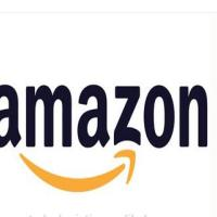 Amazon FBA Logistics Professional Shipping Service