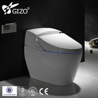 European Elegant design two piece wc toilet save water P-trap S-trap washdown toilet floor mounted water closet