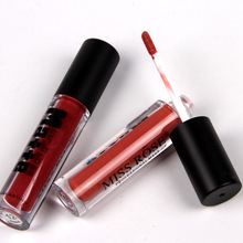 Wholesale Free Sample 12 color not fade Waterproof Lip Gloss For Girl