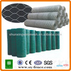 Green pvc coated chicken wire mesh\PVC coated hexagonal wire mesh(ISO9001:2008 professional manufacturer)