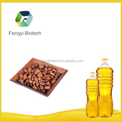 Fresh Pine Nut Kernel Oil New Product Price