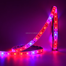 P9411 5V RGB programmable led strip pixel strip two years warranty