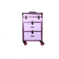 Professional aluminum trolley beauty travel case cosmetic box