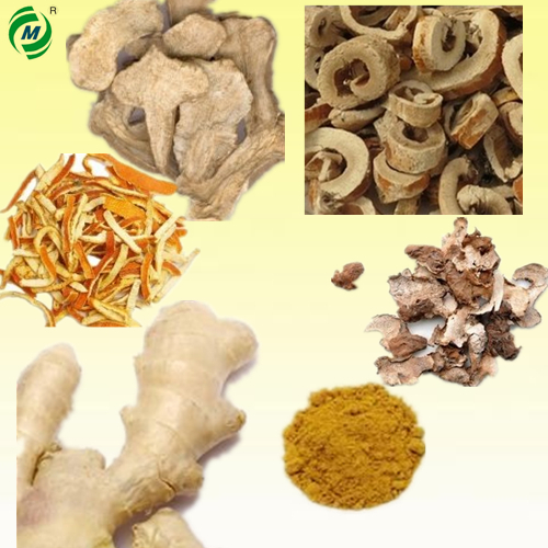 Chinese herbal medicine Wuqisan for curing nephritis, colibacillosis