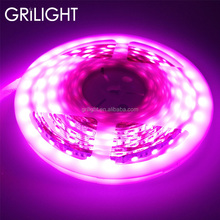 IP65 waterproof SMD5050 RGB led strip light