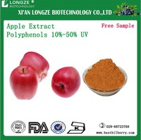 hot sale apple extract apple Polyphenols/Apple Extract pectin with free sample
