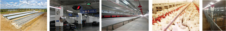 Poultry farm dimmer led intelligent dimmer system programmable led timer