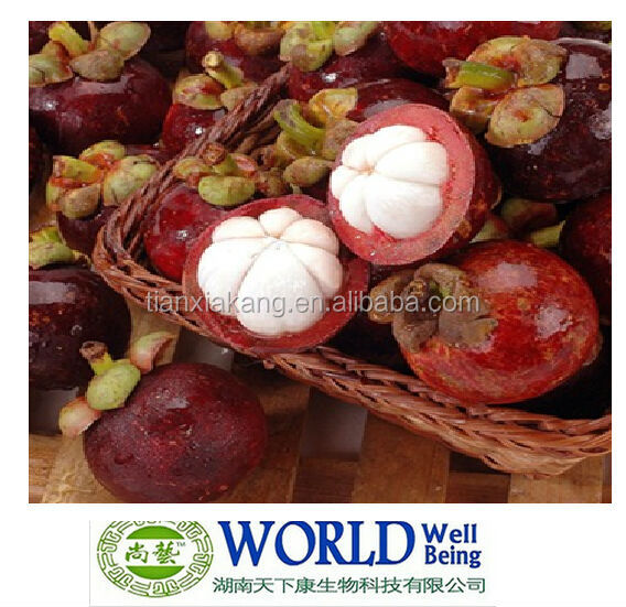 supplier mangosteen extract 10%-30% Alpha Mangostin/extraction of mangosteen juice