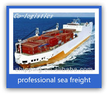 The Cheapest Sea Freight from China to Brisbane-mickey