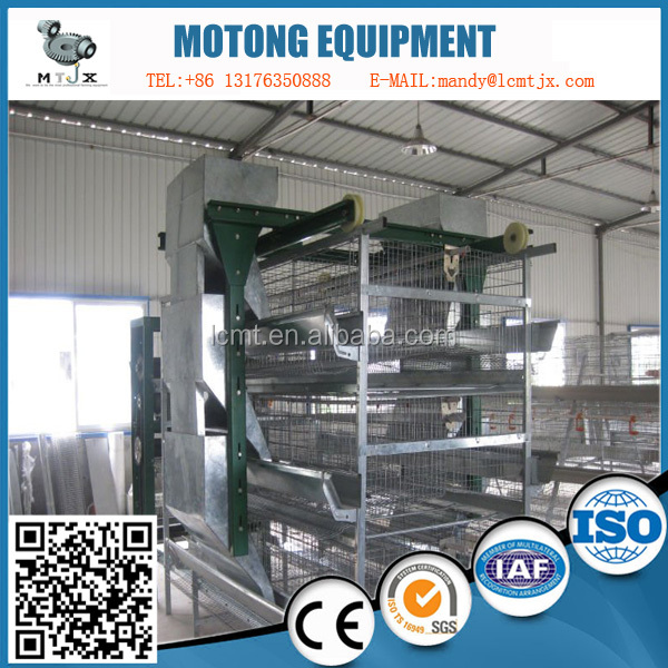 Sales of fully automated old broiler chicken cage layer two doors