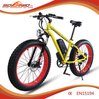 electric bicycle 500 watts beach bike CE EN15194 approived