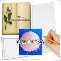 CMC (Carboxy Methyl Cellulose) for Paper Making Industry